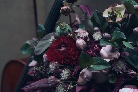 Paeonia Floral