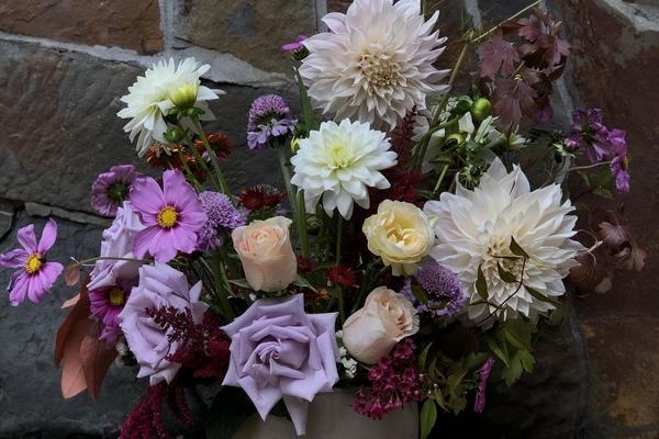 Petals and Palette