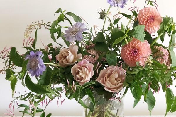 Sophie's Florals