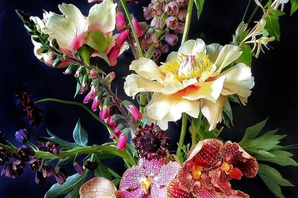 Belle Terre Floral