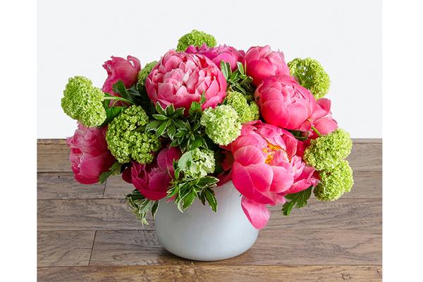 QG Floral + Landscape